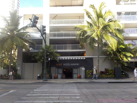 Vive Hotel1