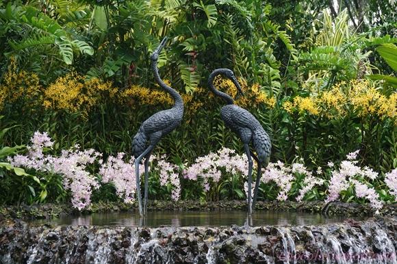 National Orchid Garden2