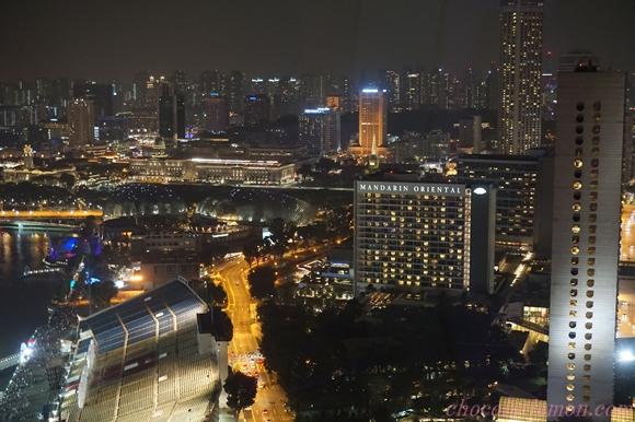 Singapore Flyer13