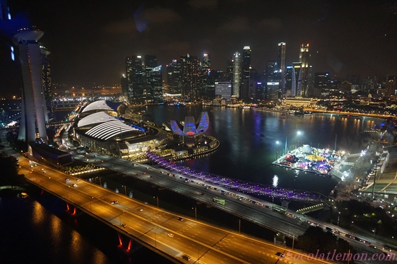 Singapore Flyer11