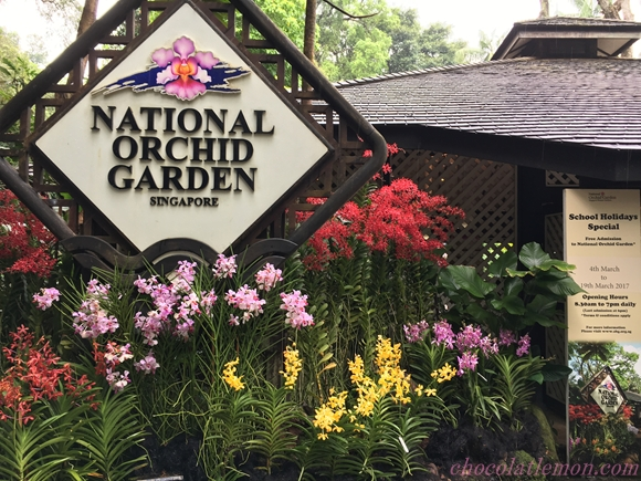 National Orchid Garden1