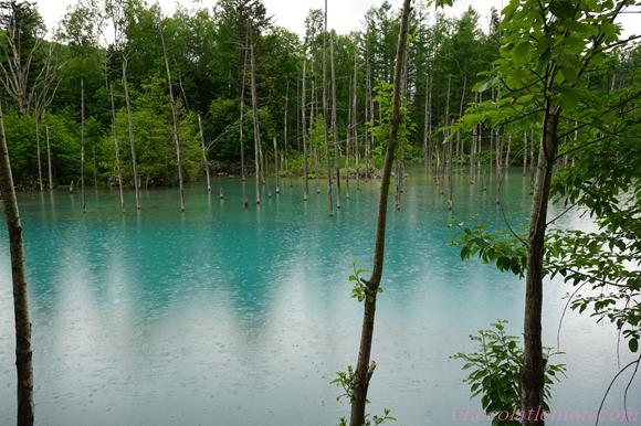 青い池10