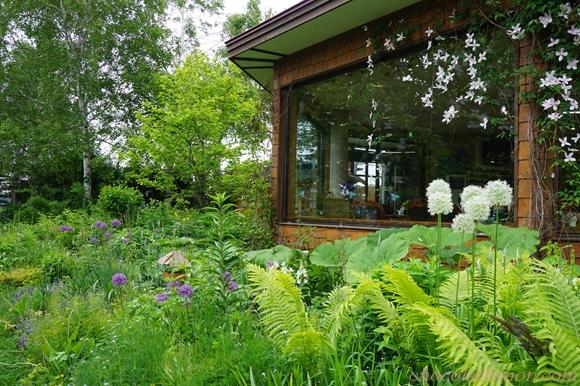 紫竹ガーデンカフェ3