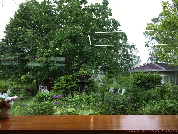 紫竹ガーデンカフェ6