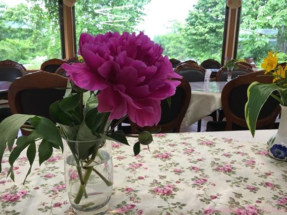 紫竹ガーデンカフェ11