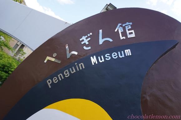 旭山ペンギン2