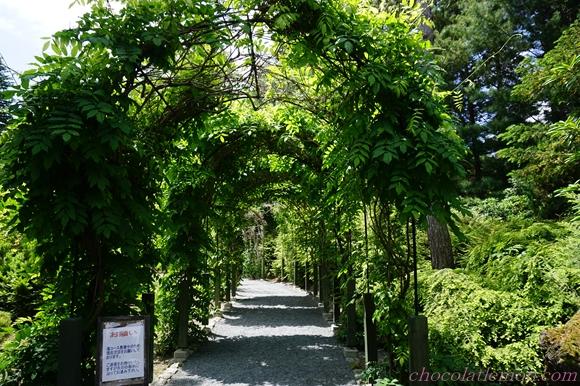 真鍋庭園3