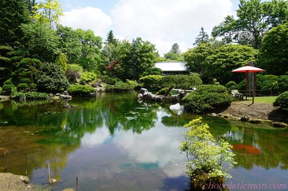 真鍋庭園5