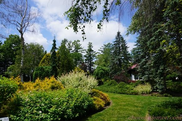 真鍋庭園6