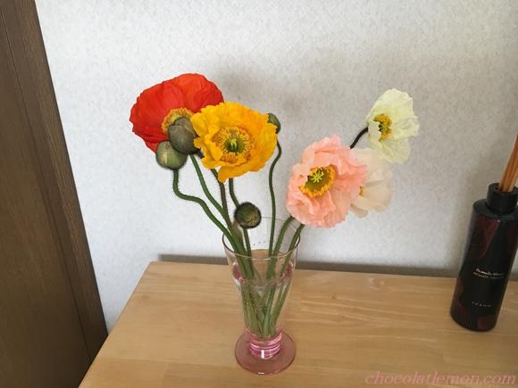 キリ花ポピー2