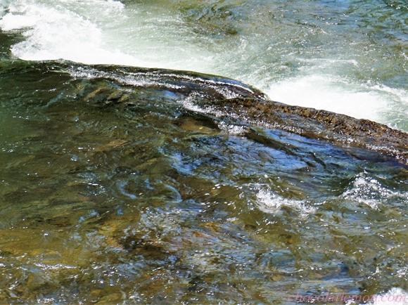 さくらの滝11