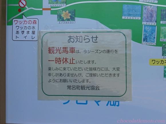 ワッカ原生5