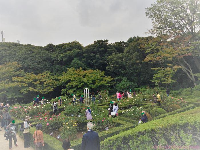 旧古河庭園23