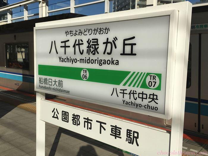京成バラ園2