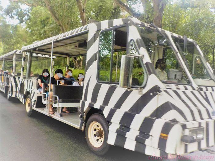 シンガポールZOOバス