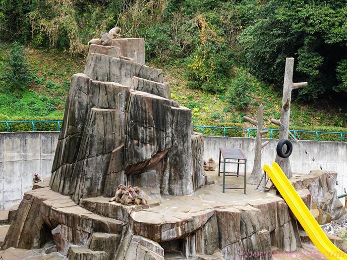 福岡市動植物園2