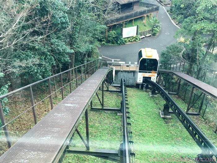 福岡市動植物園33